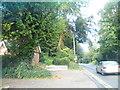 SU7682 : White Hill, Remenham by David Howard
