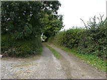 R5702 : View up farm road to minor road by derek menzies