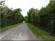 R5702 : Minor road by derek menzies