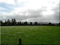 R5602 : Grass paddock by derek menzies