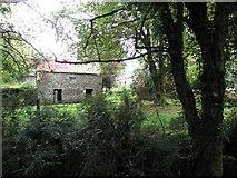 H1410 : Old farm building, Aghatawny Lower by Kenneth  Allen