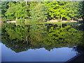 TQ2272 : Queen's Mere, Wimbledon Park by David Howard