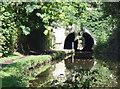 SJ9392 : Woodley Tunnel by Stephen Burton