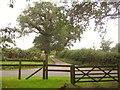 ST6822 : Junction, Stowell Hill by Derek Harper