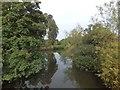 SX9298 : River Exe at Brampford Speke by David Smith
