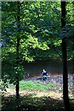 SK3788 : Fishing in the River Don at Salmon Pastures by Graham Hogg