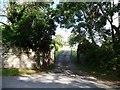 ST3594 : Eastern entrance to Llwyncelyn by Christine Johnstone
