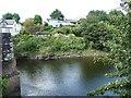 ST3894 : The hamlet of Newbridge on Usk by Christine Johnstone