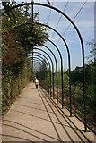 SK3688 : Birdcage walkway by Graham Hogg