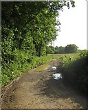 SS8526 : Track near Dunsley Farm by Derek Harper