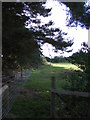 TG1620 : Footpath to Haveringland Road by Geographer