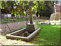 TG3103 : Rockland St Mary's churchyard by Evelyn Simak