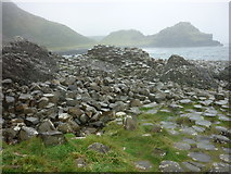 C9444 : Giant's Causeway by Carroll Pierce