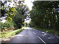 TG1621 : B1149 Holt Road, Buxton Heath by Adrian Cable