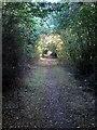 TL0145 : Path towards Elm Farm by Philip Jeffrey