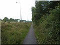 TQ2841 : Footway alongside A23 by Oliver Dixon