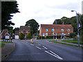 TG1813 : Hall Lane, Drayton by Geographer
