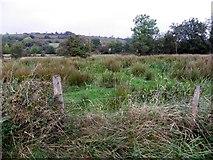 H1117 : Garryfluigh Townland by Kenneth  Allen