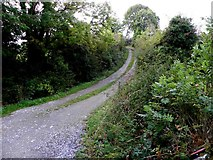 H1114 : Minor road at Cornageeragh by Kenneth  Allen