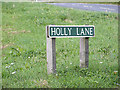 TG2014 : Holly Lane sign by Adrian Cable