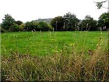 H0712 : Kiltynashinnagh Townland by Kenneth  Allen