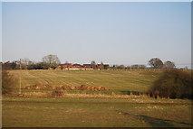 SJ8234 : Farmland south of Cotes Heath by N Chadwick