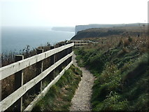 TA1974 : Headland Way path, Bempton Cliffs by JThomas
