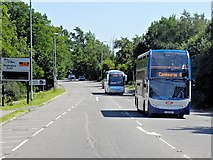 TL4259 : Stagecoach Cambridge Citi Bus on Madingley Road by David Dixon