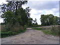 TG2505 : Field entrance/farm track off the B1332 Bungay Road by Adrian Cable