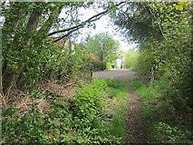 NS4660 : Path, Hollowhouse by Richard Webb