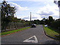 TG2503 : South Wood Drive, Caistor St.Edmund by Adrian Cable