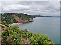 SX9265 : Babbacombe Bay, Devon by Derek Voller