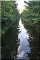 NT0876 : Looking west from Priestinch Bridge by Anne Burgess