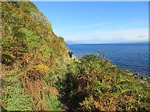 NS1153 : Coast path, southern Bute by Richard Webb