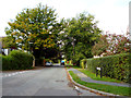 TQ2454 : Lower Kingswood:  Green Lane by Dr Neil Clifton