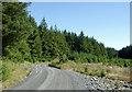 SN8155 : Forestry road in Coed Nant-yr-hwch, Powys by Roger  Kidd
