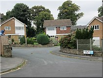SE0824 : Clover Hill Close - Love Lane by Betty Longbottom