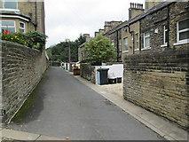 SE0824 : Daisy Bank - Clover Hill Road by Betty Longbottom