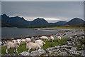 NG5819 : Loch Slapin at Camas Malag by Tom Richardson