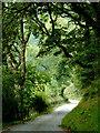 SN8953 : The lane to Abergwesyn, near Beulah, Powys by Roger  Kidd