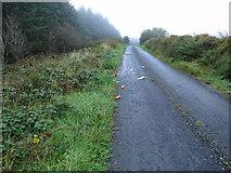 R2033 : Litter everywhere by Neville Goodman