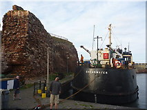 """NT6779 : Coastal East Lothian : """"What Do You Reckon?  Fifty Quid?"""" by Richard West"""