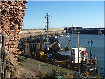 NT6779 : Coastal East Lothian : MV Shearwater In The Visitor's Berth At Victoria Harbour, Dunbar by Richard West