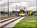SJ9299 : Tram Approaching Ashton West by David Dixon