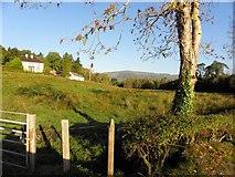 H0410 : Corrasmaghooil Townland by Kenneth  Allen