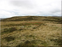 NY5308 : The summit of Wasdale Pike by David Purchase