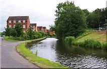 SO8277 : Staffs & Worcs Canal & housing in Alder Avenue, Kidderminster by P L Chadwick
