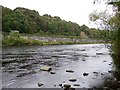 NZ0863 : Railway on river wall below Eltringham by Andrew Curtis