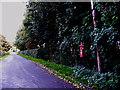 TM0940 : Wenham Road & Rookery Farm Wenham Road Postbox by Adrian Cable