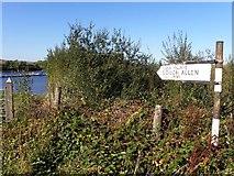 G9819 : Sign for Lough Allen by Kenneth  Allen